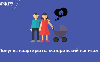 Как купить квартиру с использованием материнского капитала